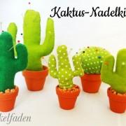 Anleitung Kaktus