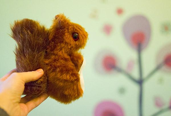 Eichhörnchen Nähset